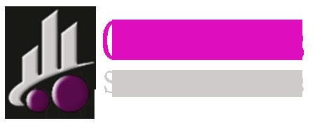 producator incaltaminte logo